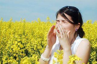 sneeze__1508457a